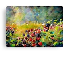 Fruit Harvest Canvas Print