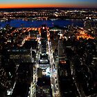 The Manhattan Landscape by Rhys  Bevan