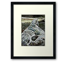 Log memorial Framed Print