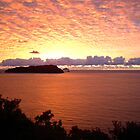 Red Sky at Morning, New Zealand Sunrise over Pacific Ocean by Vicktorya Stone