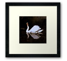 The silence is my song  Framed Print