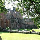 Furness Abbey, Cumbria.  by Roy  Massicks