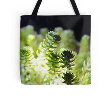 corel or suculant Tote Bag