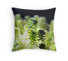 corel or suculant Throw Pillow