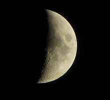 Moon Over Auburn 10-13-10 by David Dehner