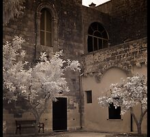Courtyard at the Masseria by Rene Hales