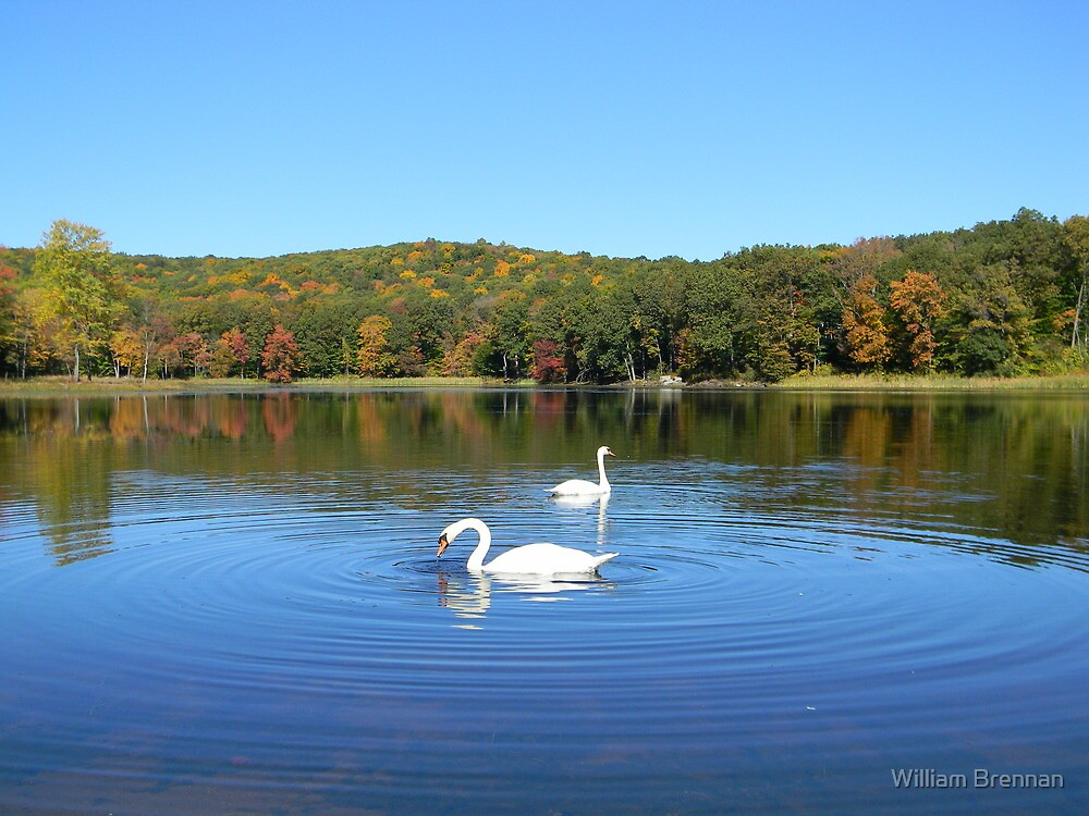 Gorgeous fall day. by William Brennan
