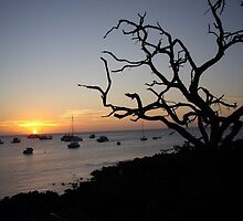 Sunset Galapagos looking out to ocean by Angela Creighton