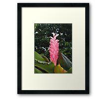 Unique flower Framed Print