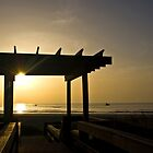 Boardwalk Sunrise by Shane Jones