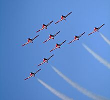 Snowbird Formation by Victoria DeMore