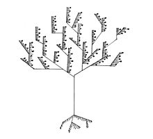 Abstract Line Drawing Tree Photographic Print