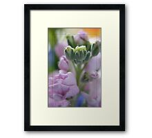 Think Pink...for breast cancer Framed Print