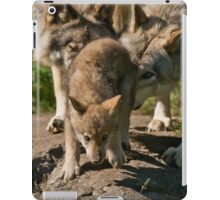 Timber Wolves And Pup iPad Case/Skin