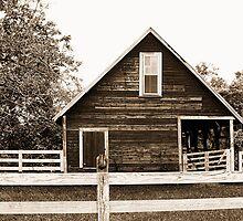 Old Barn Sepia Brown -Burnt Corn, Alabama by Erin Johnson