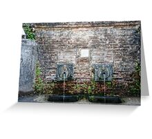 Drinking Fountains of Italy Greeting Card
