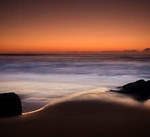 FIRST LIGHT by Andrew Dickman