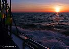 Daybreak on the Chesapeake Bay - Greeting Card by Marcia Rubin