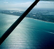 Aerial View of the Miami Coast by Marcia Rubin