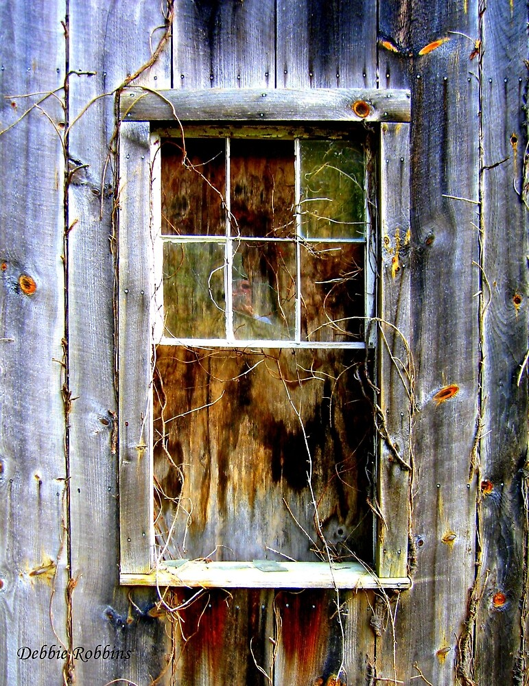 Window and Ghost From So Very Long Ago by Debbie Robbins