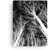 Branches lightning black and white - Ramas rayo blanco y negro Canvas Print