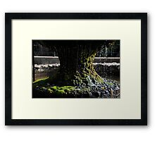 Base of the Fountain Framed Print
