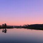 Sunrise on Lake Miccosukee by RebeccaBlackman