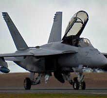 It's a big bug......ok, High Tech Super Hornet then! by Allen Gray