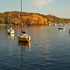 Autumn on the Saint Croix by Nora Caswell