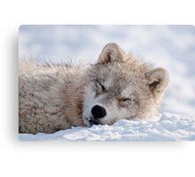 I lay my head down to sleep Metal Print