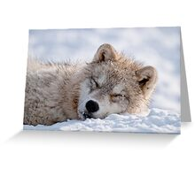 I lay my head down to sleep Greeting Card