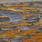 Scruffy by James  Birkbeck Abstracts