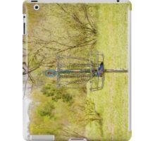 Disc Golf Basket 7 iPad Case/Skin