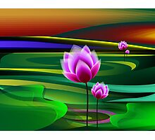 Lotus in the midst of green lake Photographic Print