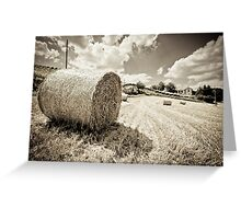Haystacking Time Greeting Card