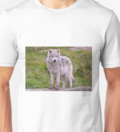 They're Growing - Arctic Wolf Pups  Unisex T-Shirt