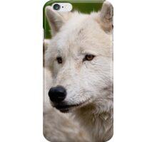 Arctic Wolf Pair iPhone Case/Skin
