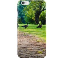 LET'S HEAD TO THE POND! iPhone Case/Skin