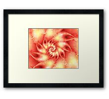 Coral Touch Framed Print