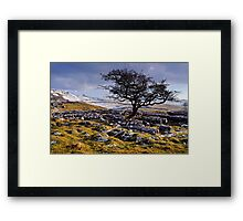 Limestone Country - The Yorkshire Dales Framed Print