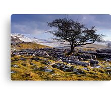 Limestone Country - The Yorkshire Dales Canvas Print
