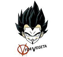 Vegeta Photographic Print