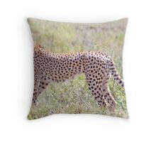 On the Lookout, Serengeti Cheetah, Tanzania, Africa Throw Pillow