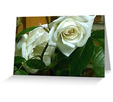 White Rose #1 Greeting Card