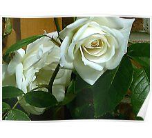White Rose #1 Poster