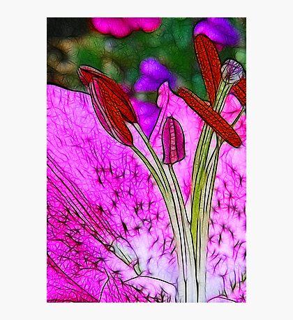 Fractalius Flower Photographic Print