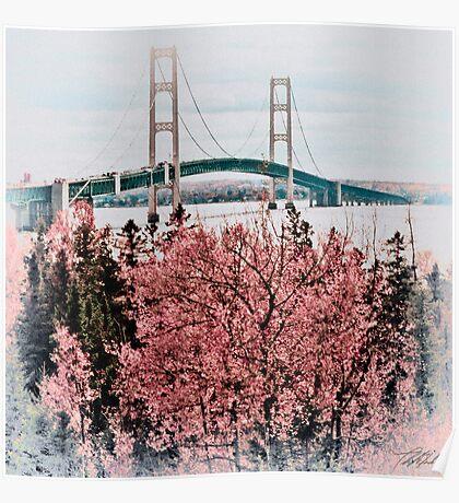 Mackinac Bridge 101310 Poster