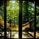 Lazy Daintree by angelo marasco