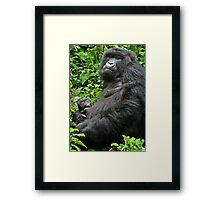 Gorilla Momma Framed Print