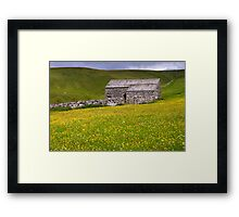 Summer meadow - The Yorkshire Dales Framed Print
